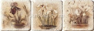 Cir & Serenissima Marble Age Inserto Travertino S/3