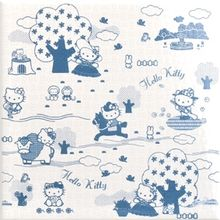 Gamma due Hello kitty Toile Toilepaper Avio