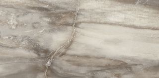 Emil Ceramica Petrified Tree Grey Panther Core Naturale Rett.