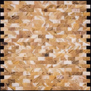 Natural Mosaic Shell SMF-01-1225