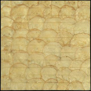 Natural Mosaic Shell SMS-04 (CS-004)